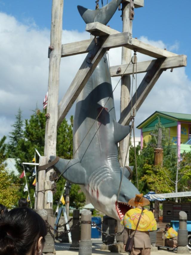 Shark mmmm JAWS mmMMM